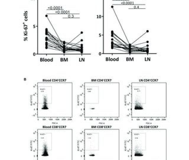 Figure 3 Memory T Cells From Blood Have Higher Percentages Of Ki 67