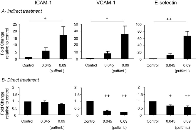 Effect of direct and indirect sbPBS treatment on the