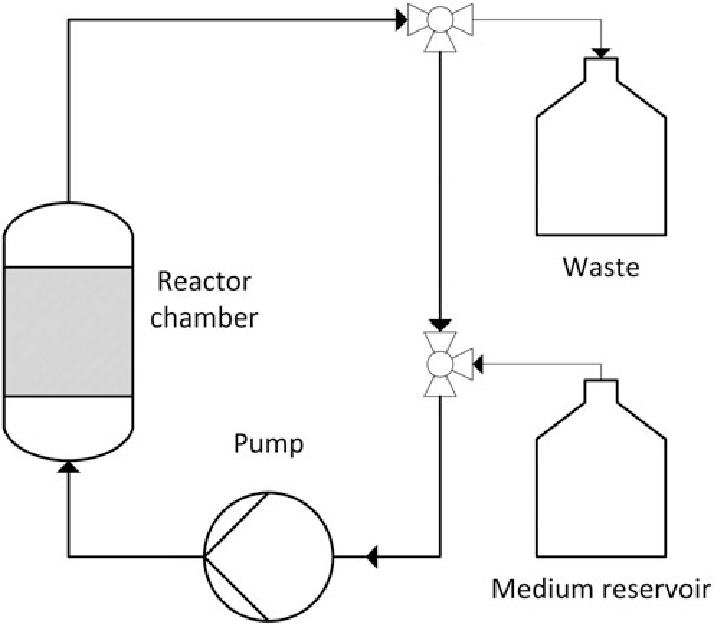 Flow chart of a perfusion bioreactor system. Arrows