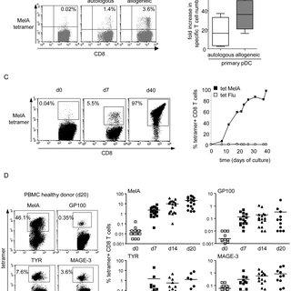 (PDF) A Novel Cancer Vaccine Strategy Based on HLA-A*0201