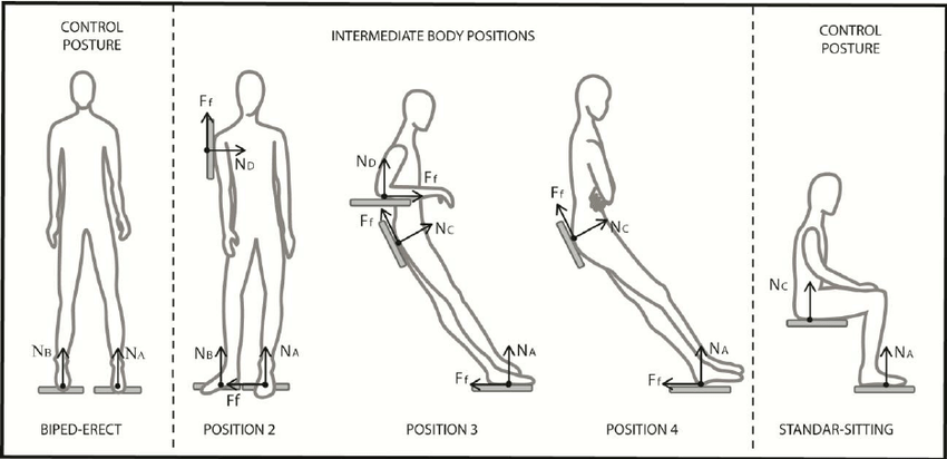 Set of postures and positions selected for testing