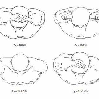 (PDF) Biomechanical Analysis of the Swim-Start: A Review