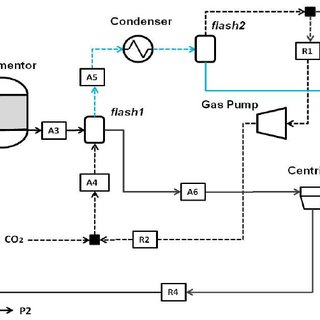 Schematic flowsheet of continuous fermentation process