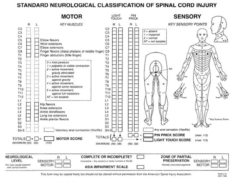 Clasificación neurológica de la lesión medular ASIA