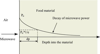 of penetration depth of microwave