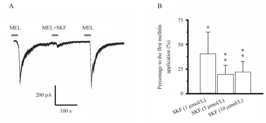 Effects of SKF-96365, a TRPC inhibitor, on melittin