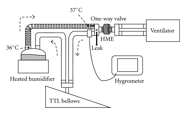 Experimental setup. In a circuit including a heated