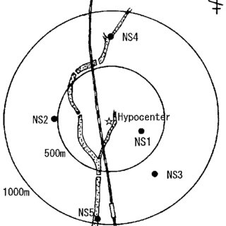 Contribution of environmental neutron activation for the