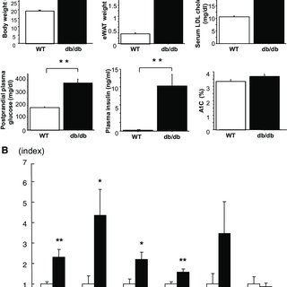 (PDF) P-Selectin Glycoprotein Ligand-1 Deficiency Is