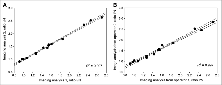 Reproducibility of image quantification. Intraobserver (A