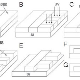 Fabrication process flow for a PDMS-based microfluidic