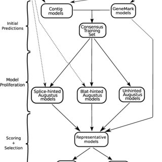 Figure 2: Model scoring flowchart. The bold line marks the