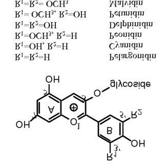 (PDF) Determination of total monomeric anthocyanin pigment