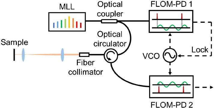 Schematic of the experimental setup. FLOM-PD, fiber-loop