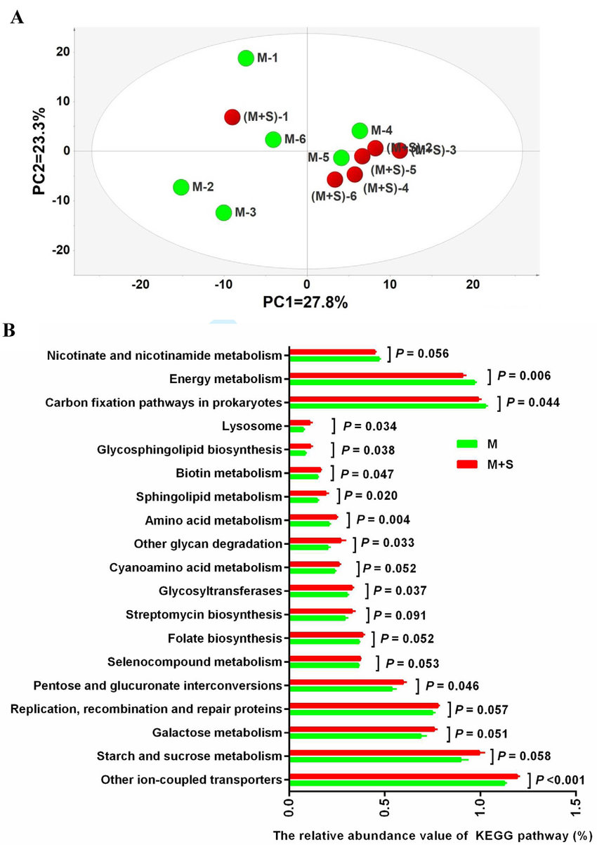 hight resolution of functional diversity of the ruminal epithelial bacteria a principal component pc
