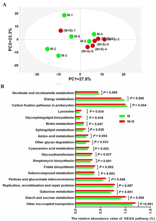 small resolution of functional diversity of the ruminal epithelial bacteria a principal component pc