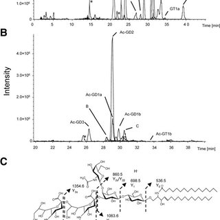 The LC-MS analysis of gangliosides extracted from the