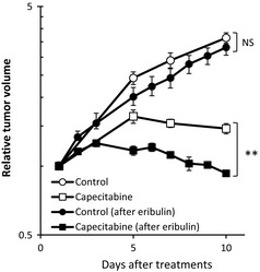 Effects of prior treatment with eribulin on antitumor
