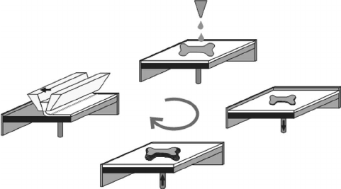 Principle of 3D-printing: the process steps, namely