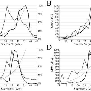 A) Polyclonal antibody versus monoclonal antibody end