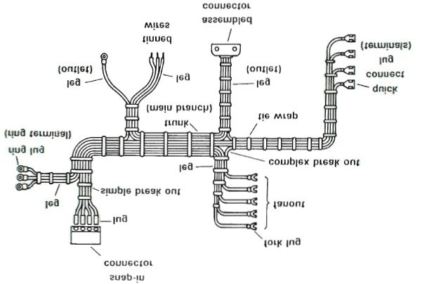 The main wiring harness components and terminology [13