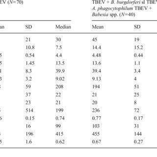 Electrophoretical detection of amplification of Borrelia