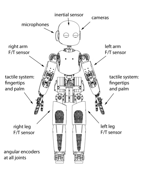 4. A schematic overview of the sensory system of the robot