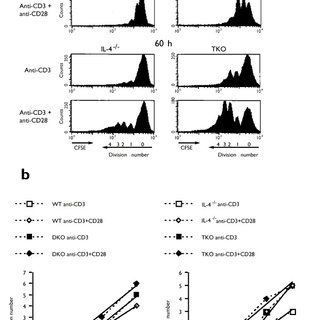 Intrinsic TH2 differentiation in DKO TH cells requires