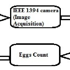 (PDF) Vision system for automatic counting of silkworm eggs