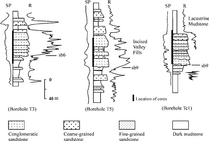 Upward-fining, channel-fill deposits developed along