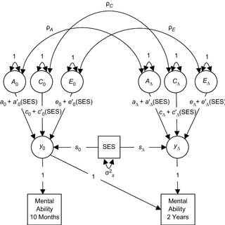 (PDF) Emergence of a Gene × Socioeconomic Status
