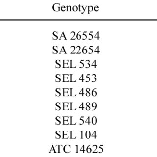 Structure and derived amino acid sequence alignments of