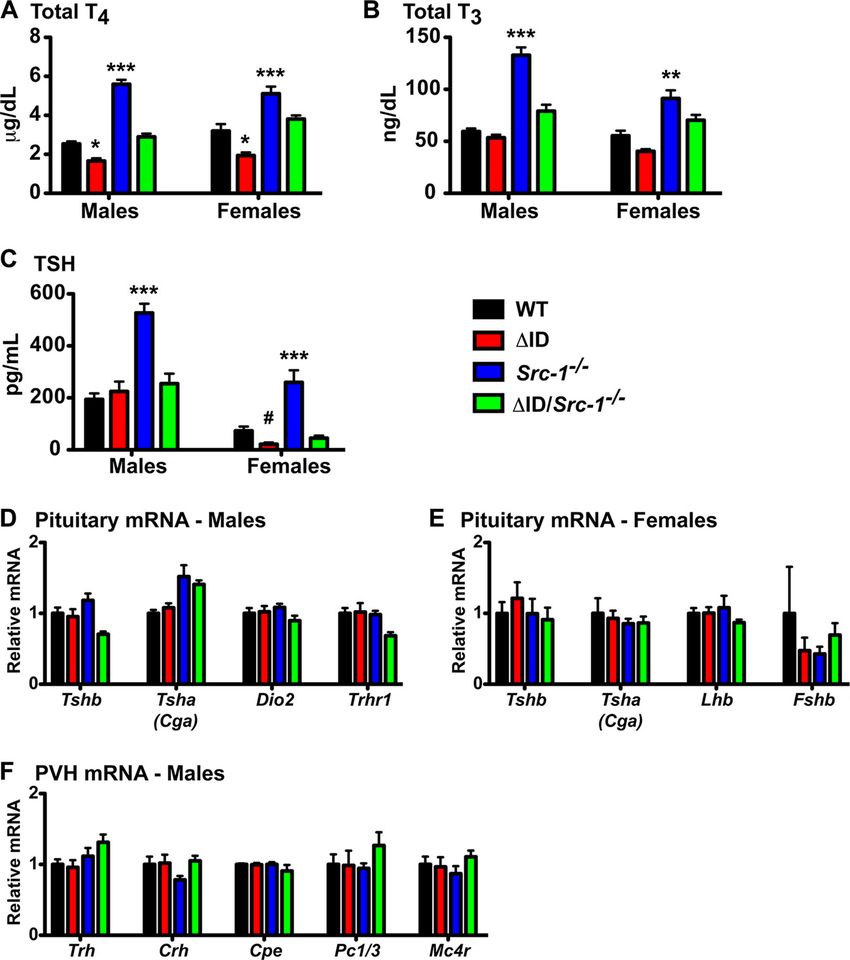 hight resolution of disruption of the interaction between the tr and ncor1 in src 1 mice normalizes