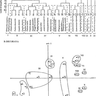 (PDF) Vegetation of the urban habitats in the Nile Delta