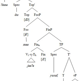 (PDF) Functional Structure in Standard Arabic and How It