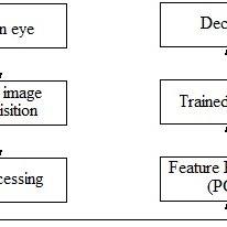 (PDF) Retina and Fingerprint based Biometric