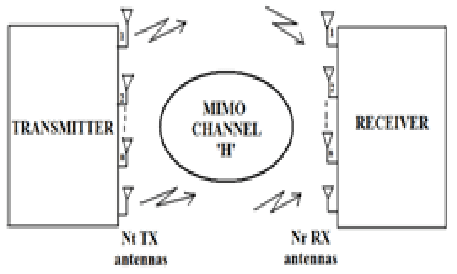 Block diagram of a MIMO wireless transmission system