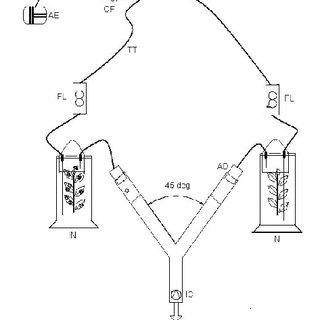 Scheme of Y-tube olfactometer setup. IN-infested; N-Normal