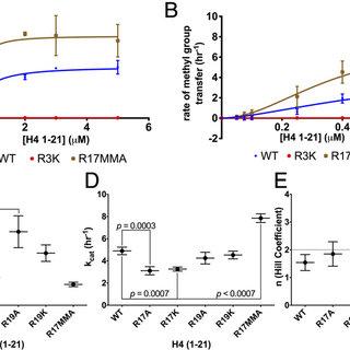 (PDF) Epigenetic control via allosteric regulation of
