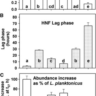 Time-course changes in HNF abundance and biovolume