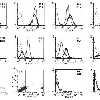 Immune phenotype of MSC-like cells from UCB and BM MSCs
