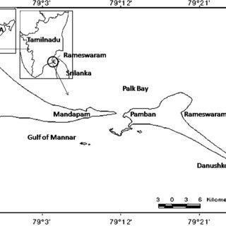 (PDF) MICROLEVEL MAPPING OF COASTAL GEOMORPHOLOGY AND