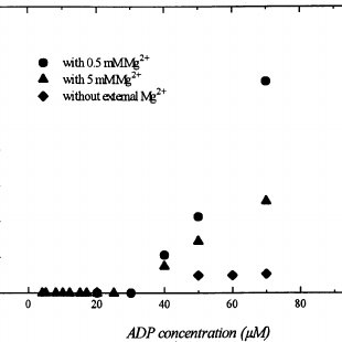Schematic display of the reactions of the coupled assay
