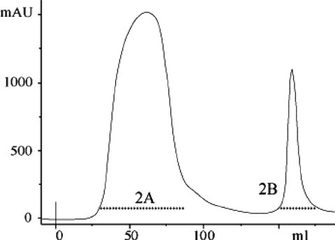 Chromatography of 40 mL of heat-treated fraction 1B on a