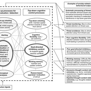 Information processing in the cognitive model of