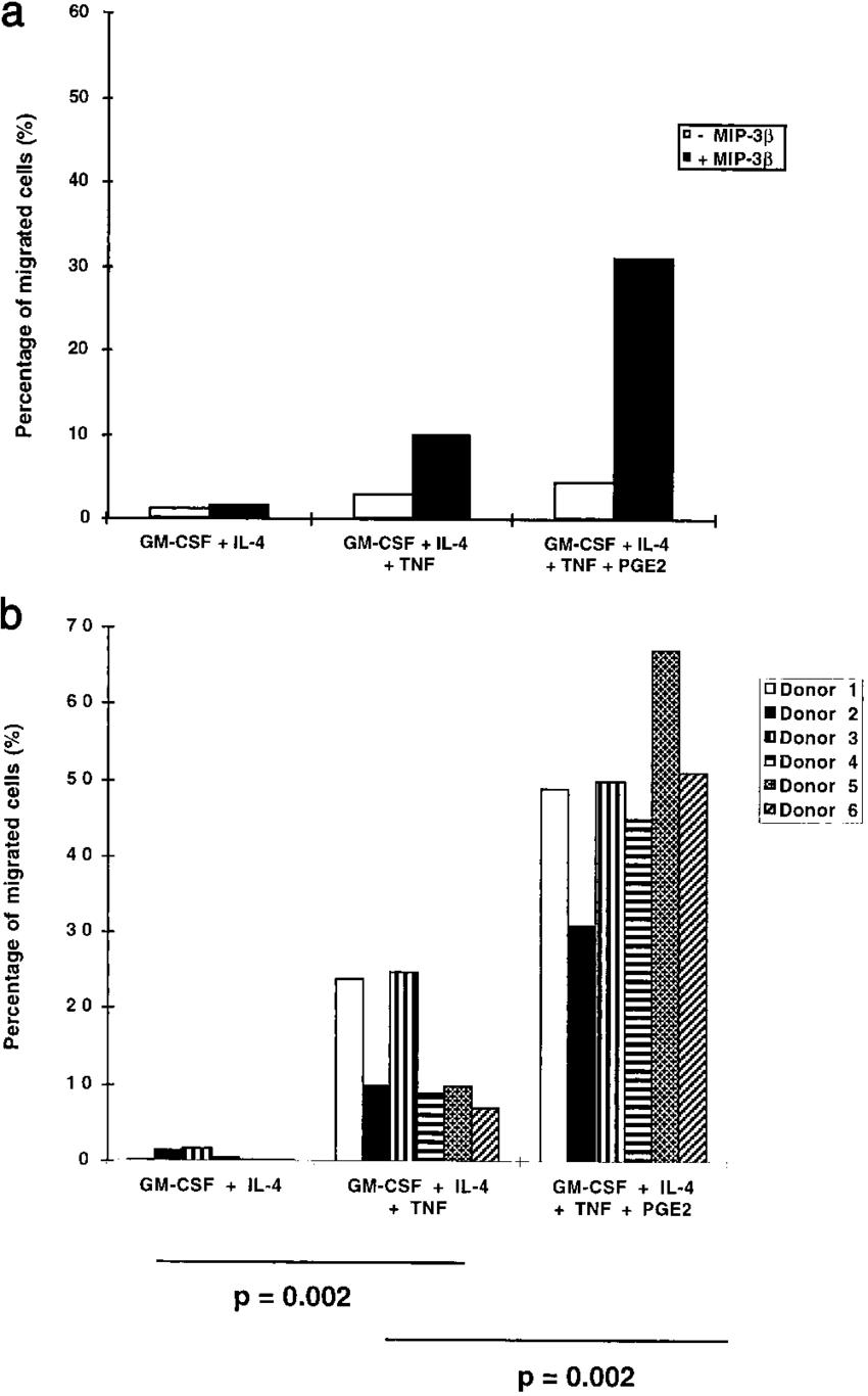 medium resolution of mature but not immature dc migrate in response to elc mip 3 migration download scientific diagram