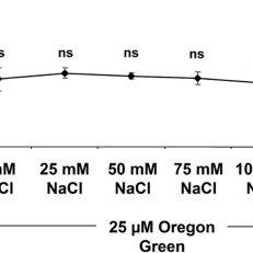 Calibration curve for Oregon Green 488 dextran