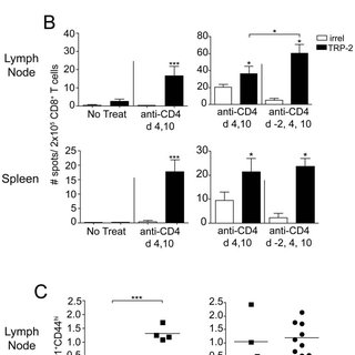 (PDF) Protective CD8 Memory T Cell Responses to Mouse