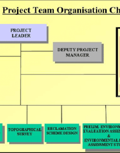 Organization chart of the thoricos bay project team also download rh researchgate
