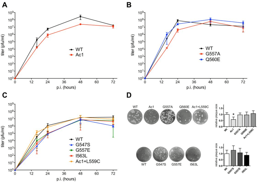Growth kinetics of recombinant influenza viruses with